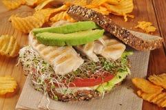 Geroosterde kip en spruitensandwich stock foto