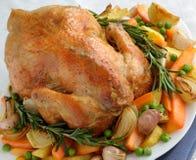 Geroosterde Kip met Groenten Stock Fotografie