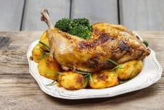 Geroosterde kip met groenten Royalty-vrije Stock Foto's
