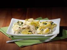 Geroosterde kippenasiago tortellini Royalty-vrije Stock Afbeeldingen