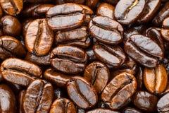 Geroosterde koffiearabica Royalty-vrije Stock Afbeeldingen