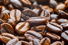 Geroosterde koffiearabica Stock Afbeelding