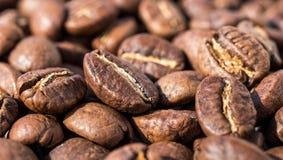 Geroosterde koffiebonen, backgrounde Macro Close-up Stock Foto