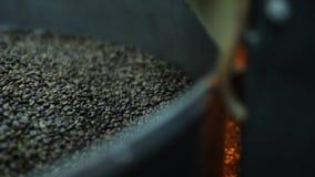 Geroosterde koffiebonen in de machine stock footage