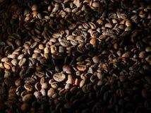 Geroosterde koffiebonen in de schaduw van tonaliteit met straalverlichting Achtergrond royalty-vrije stock fotografie