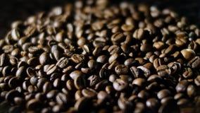Geroosterde koffiebonen in het zachte licht in 4k stock video