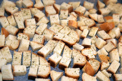 Geroosterde croutons Royalty-vrije Stock Foto's
