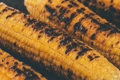 Geroosterde maïskolven Stock Fotografie