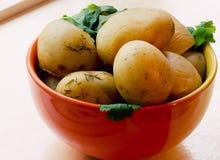 Geroosterde nieuwe aardappels Royalty-vrije Stock Afbeelding