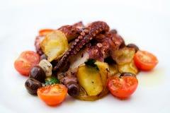 Geroosterde octopus Stock Foto's