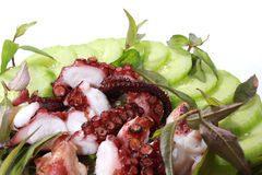 Geroosterde octopus royalty-vrije stock afbeelding