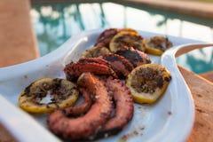Geroosterde octopus tijdens een Hawaiiaanse zonsondergang Stock Foto's
