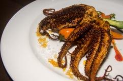 Geroosterde Octopus van een exclusief restaurant royalty-vrije stock fotografie