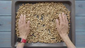 Geroosterde pinda's op bakselblad stock videobeelden