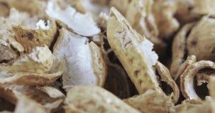 Geroosterde pindashells stock footage