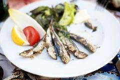 Geroosterde sardines. royalty-vrije stock afbeeldingen