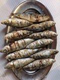 Geroosterde Sardines Stock Foto