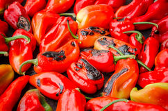 Geroosterde Spaanse pepers Royalty-vrije Stock Afbeelding