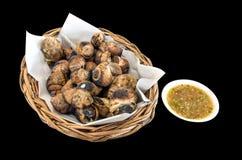 Geroosterde Thaise Escargotshells met zeevruchten onderdompelende saus Stock Fotografie