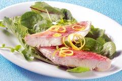 Geroosterde verse visfilets op blad groene salade Stock Foto's