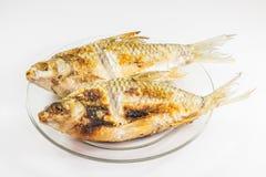 Geroosterde vissen Stock Foto's