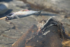 Geroosterde vissen Stock Afbeeldingen