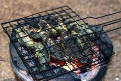 Geroosterde vissen, het Thaise voedselstijl Geroosterd Koken Beklimmend toppositievissen op Rooster op houtskoolfornuis, de visse stock afbeeldingen