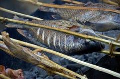 Geroosterde vissen op markt Laos Royalty-vrije Stock Foto's