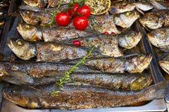Geroosterde vissenzeebaars die op voedselbox worden gediend op open het festivalgebeurtenis van het keuken internationale voedsel stock foto's