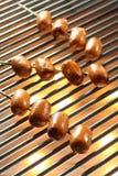Geroosterde Worst, Hotdog Royalty-vrije Stock Fotografie
