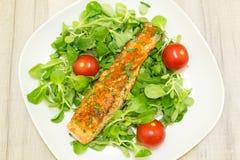 Geroosterde zalm met wortels en tomaten Stock Foto's