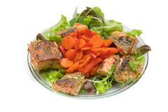 Geroosterde zalm op salade Stock Afbeeldingen