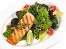 Geroosterde Zalm - Visfilet met Salade royalty-vrije stock afbeeldingen