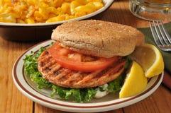 Geroosterde zalmhamburger royalty-vrije stock foto's
