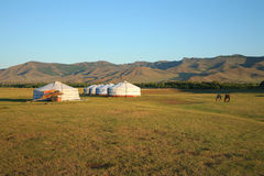 Gers Mongolië Centraal Azië Stock Foto's