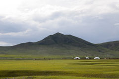 Gers on the Steppes. Three bright white gets or yurts contrast against the shaded hillside in central Mongolia Stock Image