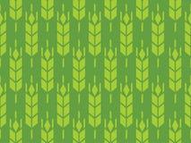 Gersten- oder Rye-Feld im Vektormuster Lizenzfreies Stockbild
