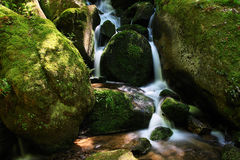 Gertelbach waterfalls, Black Forest, Germany Royalty Free Stock Images