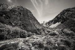 Gertrude Valley Lookout em preto e branco foto de stock