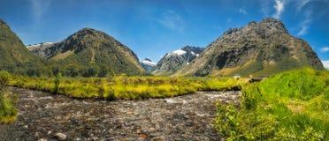 Gertrude Valley Lookout na maneira a Milford Sound imagem de stock royalty free