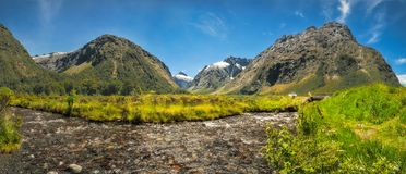 Gertrude Valley Lookout on the way to Milford Sound. Panoramic View of Gertrude Valley Lookout, a scenic stopover on the Milford Highway in Fiordland National Royalty Free Stock Image
