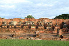 Geruïneerd standbeeld van Boedha, Ayuthaya, Thailand. Royalty-vrije Stock Foto
