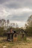 Geruïneerde cabine in de moerassen Stock Afbeeldingen