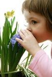 Geruch des Frühlinges Stockfotografie