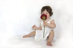 Geruch von einer Rose Lizenzfreies Stockbild