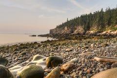 Gerundete Steine auf Acadia-Küste Lizenzfreie Stockbilder