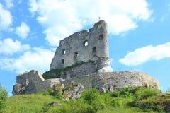Geruïneerd oud kasteel in Mirow Royalty-vrije Stock Fotografie
