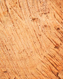 Gesägte Holzoberfläche Stockfotos