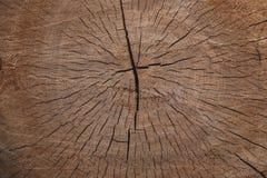 Gesägter Holzschlitz Suppengrün-Beschaffenheitshintergrund stockfoto