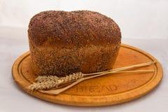Gesätes Brot und Weizen Stockfoto